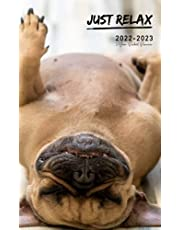 2022-2023 2-Year Pocket Planner: Sleeping French Bulldog Cover Design | 24 Month Mini Calendar Appointment Schedule Organizer Small Size for Purse | Holiday, Birthday, Contact, Password & More