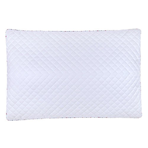 PiloMio by Qbedding 100% Cotton Quilted Adjustable Buckwheat Hull Pillow (19 inches x 29 inches)
