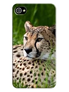 fashionable Series Case for iphone 4/4s - Free Packaging - TPU New Style