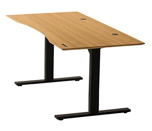 Earthlite Ergo Standing Desk with Bevel Edge, Solid Bamboo Carbonized (Ergo Cat)