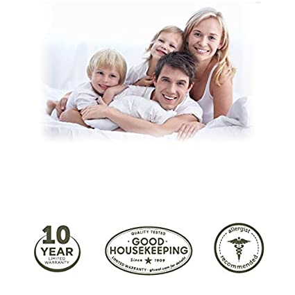 """Hypoallergenic Prevent Collection of Dust Mites 20/"""" x 36/"""" Allergist Recommended King Sized Bed Bugs and Other Allergens Zippered AllerEase Maximum Allergy Protection Pillow Protectors"""