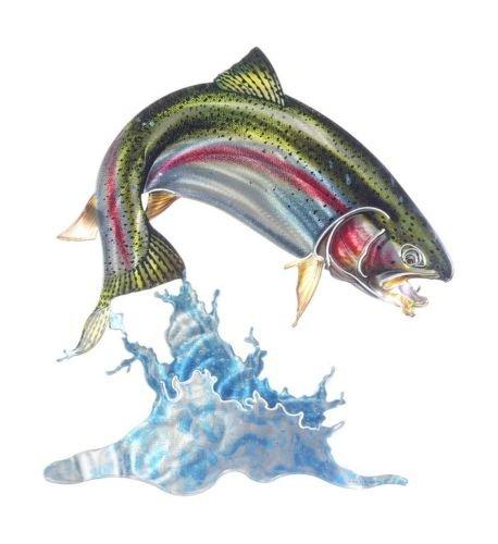 最高級のスーパー Rainbow Trout B0755W83B2 Wave Rainbow 3dメタル壁アート魚釣りロッジDecor US US Made B0755W83B2, ランドマーク:6eabd3a5 --- ballyshannonshow.com