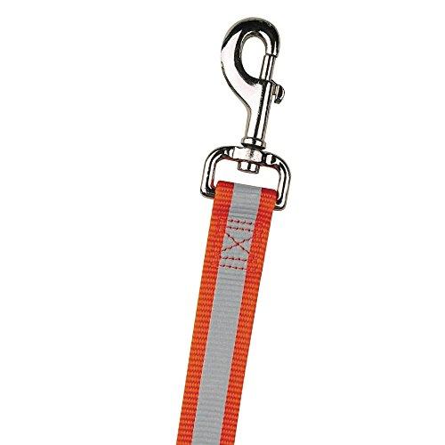 guardian gear leash - 8