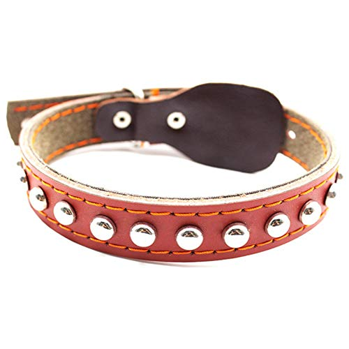 Basic Classic PU Leather Small Medium Puppy Collar Pet Dog Cat Neck Strap