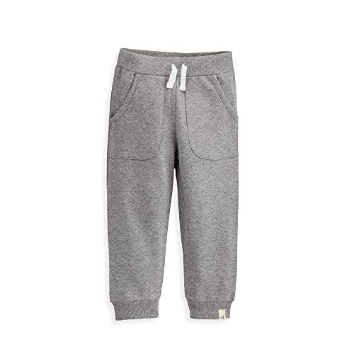 - Burt's Bees Baby Baby Toddler Sweatpants, Knit Jogger Pants, 100% Organic Cotton, Grey French Terry, 4T