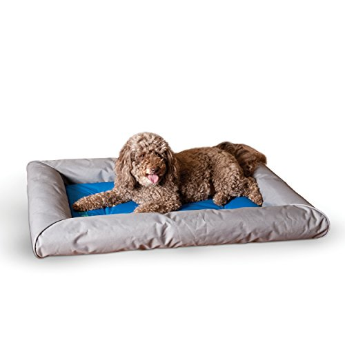 Kh Cool Bed (K&H Pet Products Cool Bed Deluxe With Bolster Large Blue/Gray 31