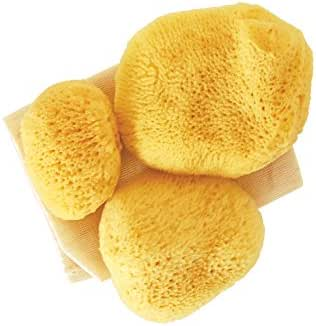 Premium Ultra Soft Sea Pearls Reusable Sea Sponges - Multi Size 4 Pack