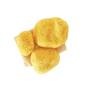 Premium Ultra Soft Sea Pearls Reusable Sea Sponges - Multi Size 3 Pack