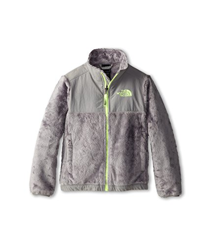 (The North Face Kids Girls Denali Thermal Jacket (Little Big Kids), Metallic Silver/Rave Green XS (6)