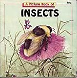 A Picture Book of Insects, Joanne Mattern, 0816721556