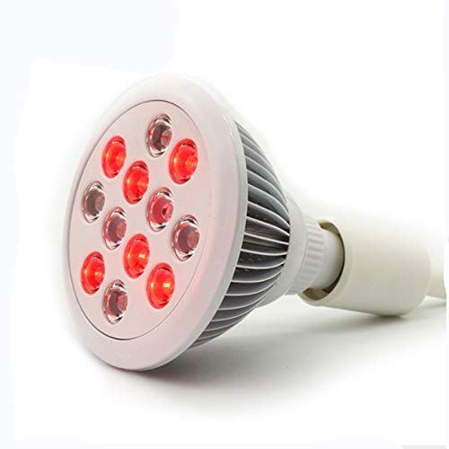 Red Led Light Pack in US - 2