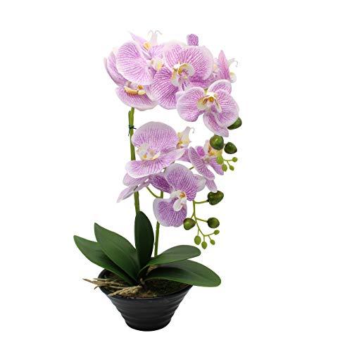 CoziBreath Large Artificial Flower Arrangements Silk Orchid Faux Flowers in Vase Table Centerpiece Home/Wedding/Party/Office Decor