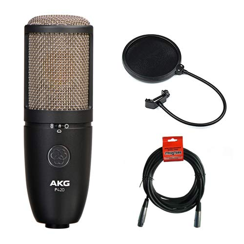 AKG Project Studio P420 Multi-Pattern Large Diaphragm Condenser Microphone with Pop Filter & 20' XLR Cable