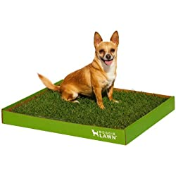 DoggieLawn Disposable Dog Potty - Real Grass - Large 24x21 inches