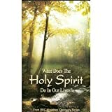 What Does the Holy Spirit Do in Our Lives (RBC Ministries' Discovery Series)