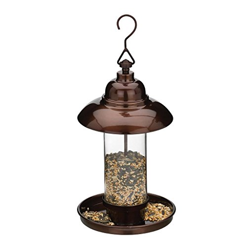 (Regal Art & Gift 6.5 Inches X 6.5 Inches X 14.25 Inches Metal/Glass Bird Feeder Classic - Bronze)
