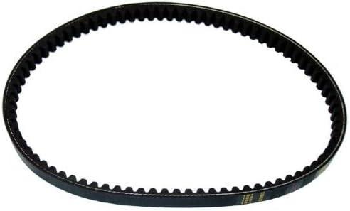 7-Rib 124.7 Length Goodyear 1071247 Serpentine Belt