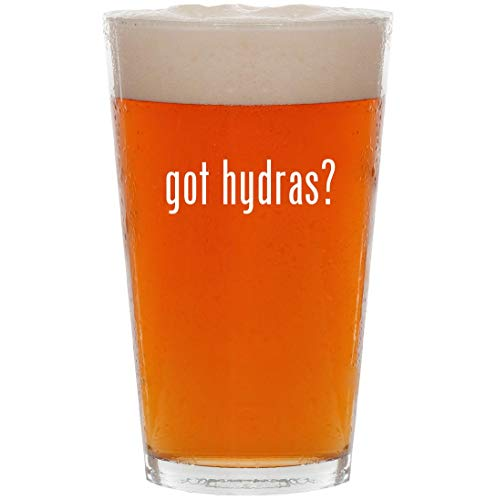 got hydras? - 16oz All Purpose Pint Beer Glass for sale  Delivered anywhere in USA