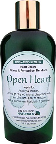 Open Heart Body Mind Vibrational Remedy Lotion 3.8 fl oz for Disappointment, Sorrow - Made with Bach Flower Essences, Gem Elixirs and Pure Essential Oils ()