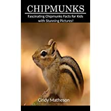 Chipmunks: Fascinating Chipmunks Facts for Kids with Stunning Pictures!