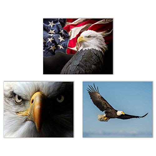 (Crystal American Bald Eagle Photography Prints - Set of 4 (8x10 Inches) Glossy Wall Art Decor)