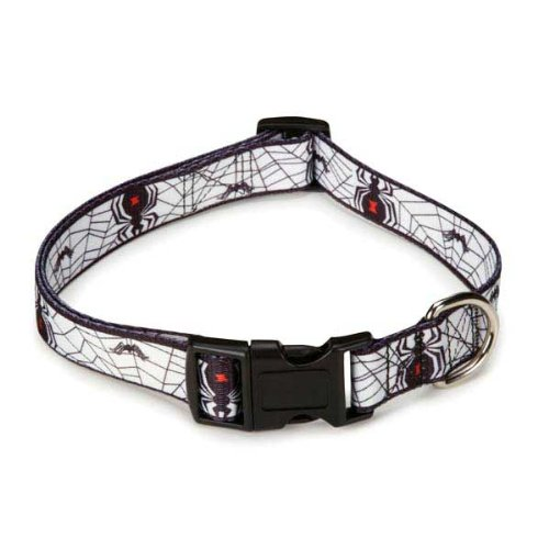 Casual Canine Polyester Fright Nite Dog Collar, 6 to 10-Inch, Spider