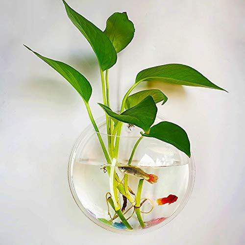 Feeders Pet Products Radient Fish Tank Feeder Aquarium Shrimp Feeding Bowl Dish Suction Cup Food Container