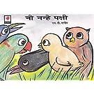 Nau nanhe pakshi (Hindi)