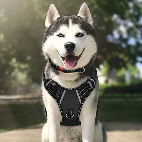 TIANYAO Large Dog Harness No Pull Reflective Oxford Material Soft Pet Vest Adjustable for Large Dogs Easy Control Harness with Dog Collar (L, Black) Collar Dog Pet Harness