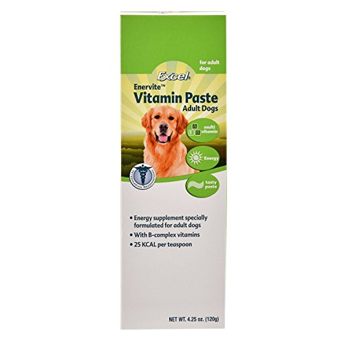 Excel Enervite Daily Supplement Vitamin Paste for Adult Dogs, 4.25-Ounce (Vitamin Enervite)