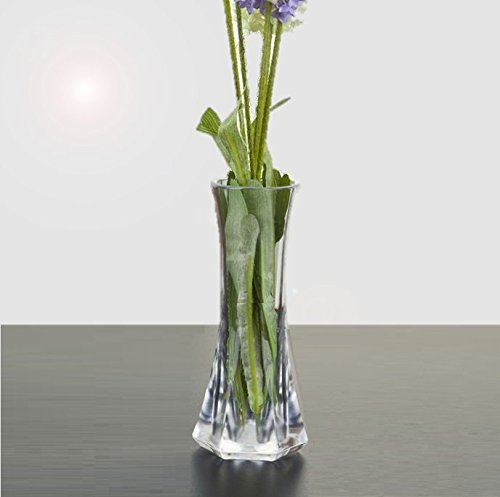Acrylic Vase Amazon