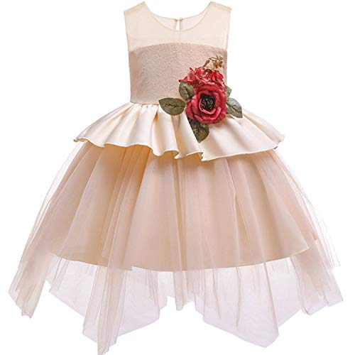 Dresses Wedding Party Princess Dresses Baby Girls First Communion Layered Tutu Dresses,Champagne1,3T