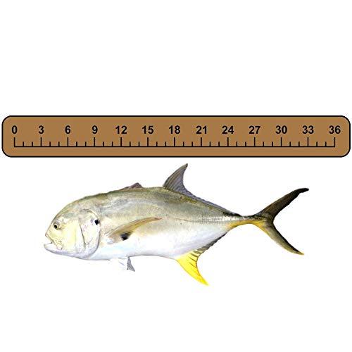 (Castaway Customs - SeaDek Foam Fish Ruler On Boat for Measuring Salt Water & Fresh Water Fish 36