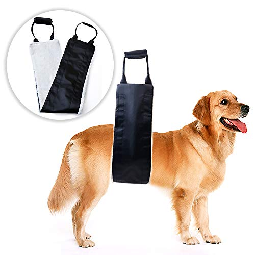 (Dog Lift Support and Rehab Harness for Weak Rear Legs, Soft Sling Assist The Dog Who are Senior, Injured, Disabled and After ACL Surgery (Black))