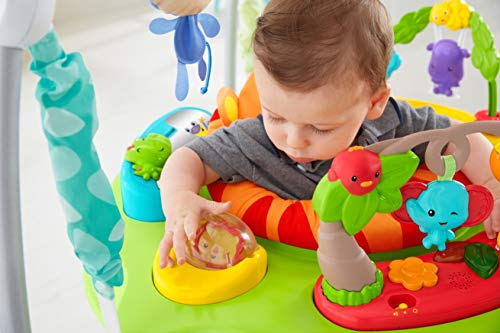 46d628053905 Fisher-Price Roarin  Rainforest Jumperoo - Import It All