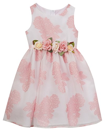 Rare Editions White Dress (Rare Editions Little Girls' Organza Easter Dress, White/Pink, 5)