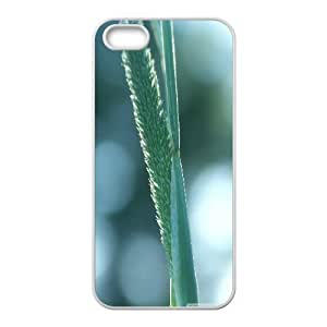 Ear 3 IPhone 5,5S Cases, Case for Iphone 5S Unique Okaycosama - White
