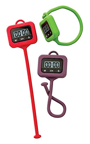 Timer Anywhere Digital by Taylor Precision Products