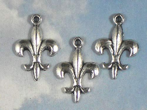 Lot 24 Tiny Fleur de Lis Charm Antiqued Silver Tone Fluer Charm Cajuns Vintage Crafting Pendant Jewelry Making Supplies - DIY Necklace Bracelet Accessories CharmingSS ()