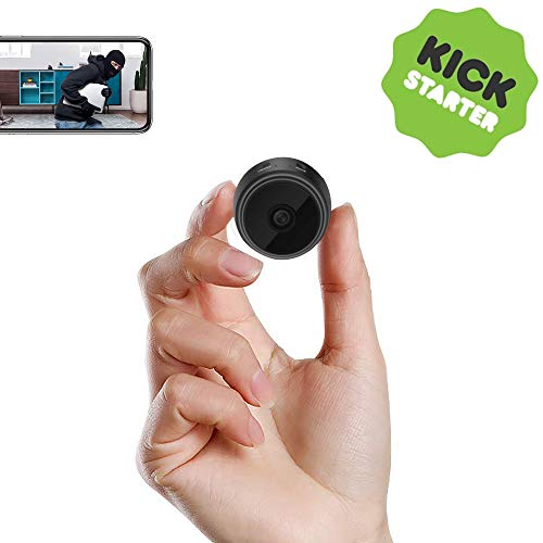 Spy Camera,PELDA Mini Hidden Camera 1080P HD Home Security Cameras Covert Nanny Cam Indoor Video Recorder Small Camcorder with Motion Activated Night Vision