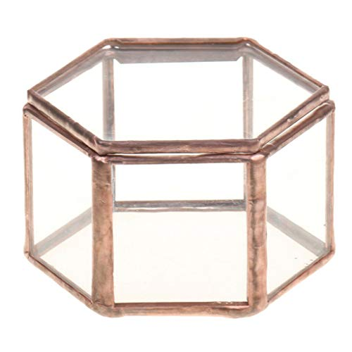 BROSCO 6pcs Mini Hexagonal Glass Jewelry Box Succulent Plants Planter Table Decor