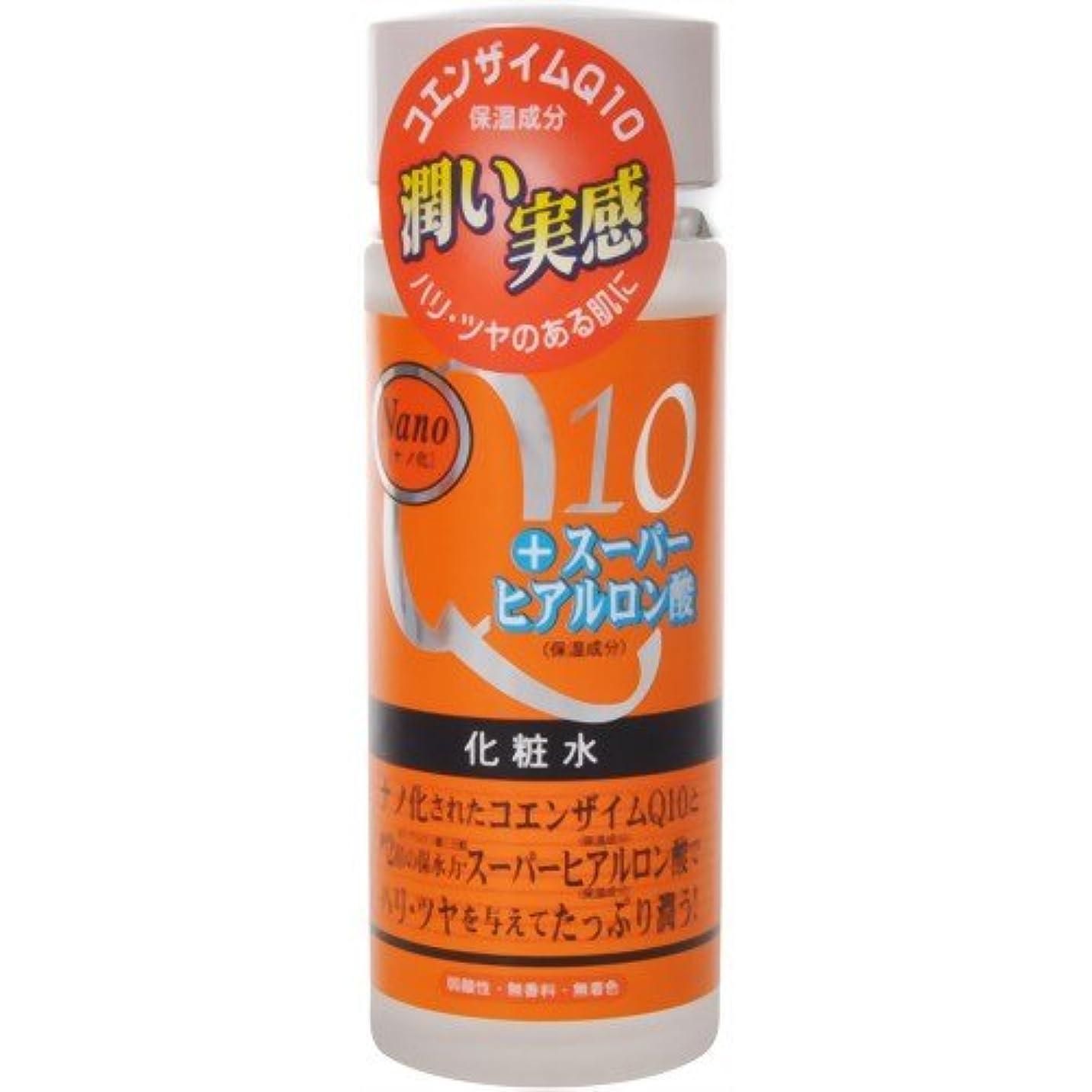 労働者突破口尊敬するナノ化?コエンザイムQ10&スーパーヒアルロン酸化粧水 120ml