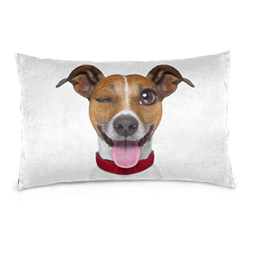 Emoticon Tongue Sticking Out (JDG Rectangle Throw Pillow Case Cushion Covers 20 x 30 inches 50 x 75 cm Funny Terrier Emoticon Sticking Out The)