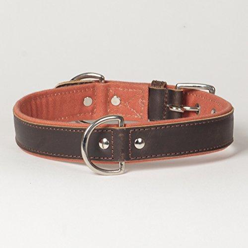 large-tough-stuff-canvas-leather-trim-sierra-dog-collar
