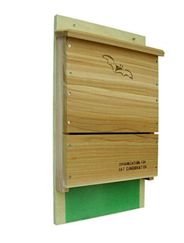 (Looker Songbird Essentials Organization for Bat Conservation (OBC) Single Chamber Bat House)