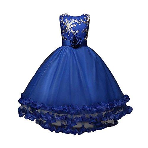 Birdfly Flower Girls Sequins Embroidery Princess Dress Children Elegant Prom Gown for Wedding Formal (Royal Blue, 12T)