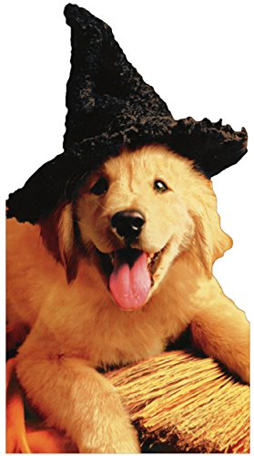 Pup With Witch Hat & Broom - Avanti Funny Dog Halloween Card