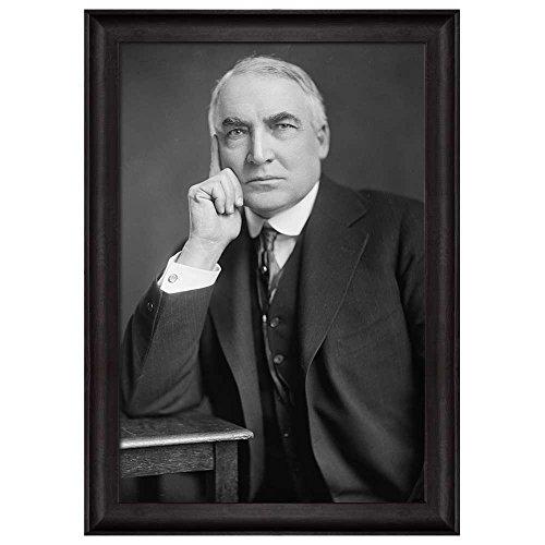 Portrait of Warren G Harding (29th President of the United States) American Presidents Series Framed Art Print