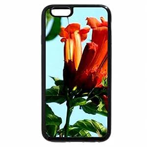 iPhone 6S Plus Case, iPhone 6 Plus Case, Flower series#8 --trumpet vine1
