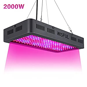 Led Grow Light Full Spectrum 2000W, Double Chips Growing Lamps with UV & IR Indoor Plants Grow Lights with Protective Sunglasses for Greenhouse Hydroponic Veg and Flower